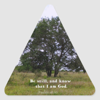 Psalm 46:10 Inspirational Bible Quote Triangle Sticker