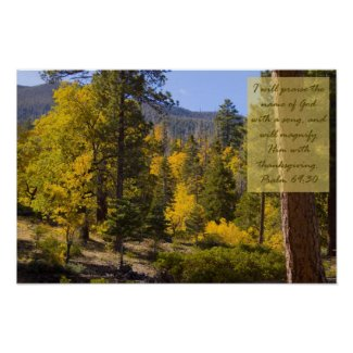 Psalm 69:30 Poster print