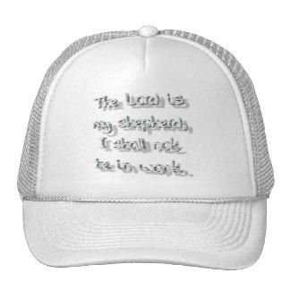 Psalme 23-1 Gris 3D Mesh Hats