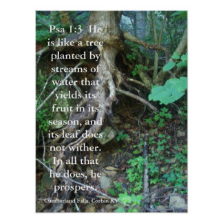 Psalms 1:3 posters