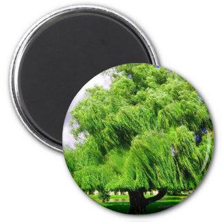 Psalms 1:3 Tree Magnets