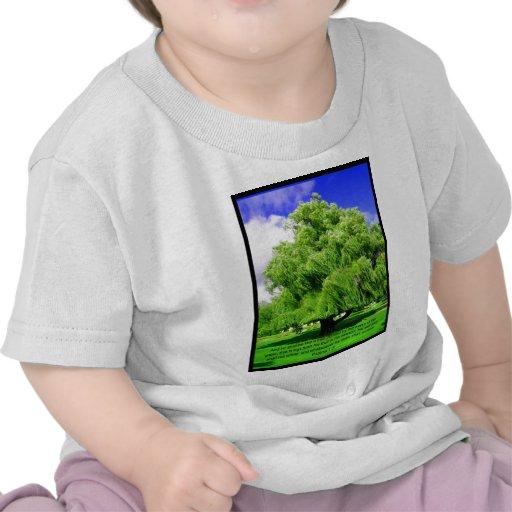 Psalms 1:3 Tree Tee Shirt