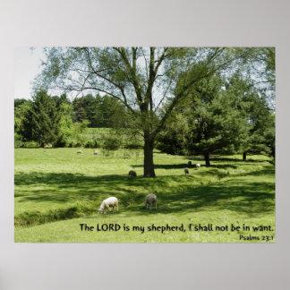 Psalms 23:1 poster
