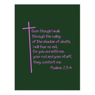 Psalms 23:4 Pink Postcard