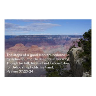 Psalms 37:23-24 Poster print