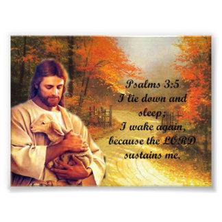 Psalms 3:5 photo