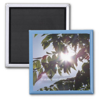 Psalms 84:11 2 inch square magnet