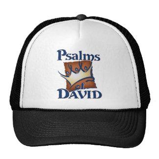 Psalms of David Trucker Hat