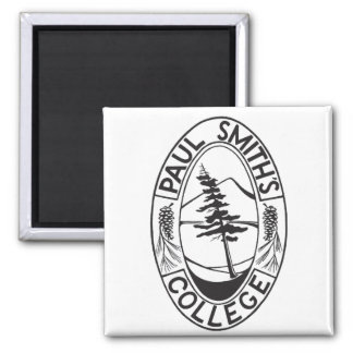 PSC square magnet