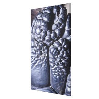 Psilomelane, an ore of Manganese, Michigan, USA Canvas Print