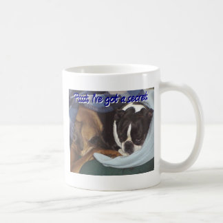 Pssst... I've Got a Secret Mugs