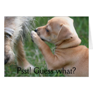 Psst! Guess what? Card