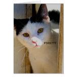 Psstt I love U card with kitten