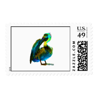 Psychadelic Young Pelican Cleaning Postage Stamps