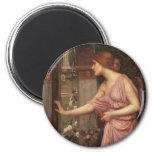 Psyche Entering Cupid's Garden Refrigerator Magnets