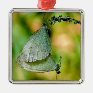 Psyche Leptosia Nina Butterflies Mating Metal Ornament