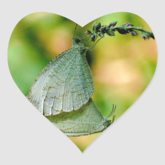 Psyche Leptosia Nina Butterflies Mating Heart Stickers