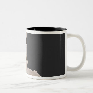 Psyche Revived by the Kiss of Cupid 1787-93 Two-Tone Coffee Mug