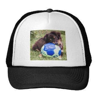Psychedelic Australian Shepherd Trucker Hat