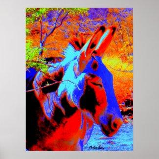 Psychedelic Donkey print