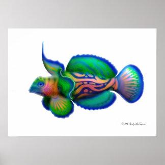 Psychedelic Mandarin Fish Poster