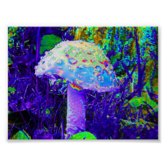 psychedelic mushroom posters