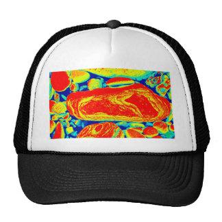 Psychedelic Pebbles Trucker Hat