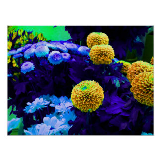 Psychedelic pop flowers poster