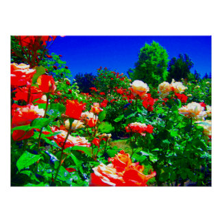 Psychedelic Rose Garden Poster