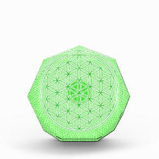 Psychedelic Sacred Geometry Heart Chakra Design Acrylic Award