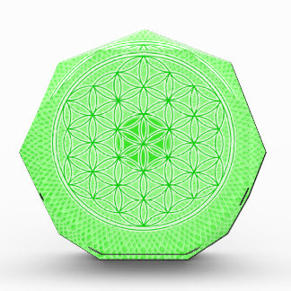 Psychedelic Sacred Geometry Heart Chakra Design Awards