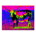 Psychedelic Texas Longhorn Cow Postcard