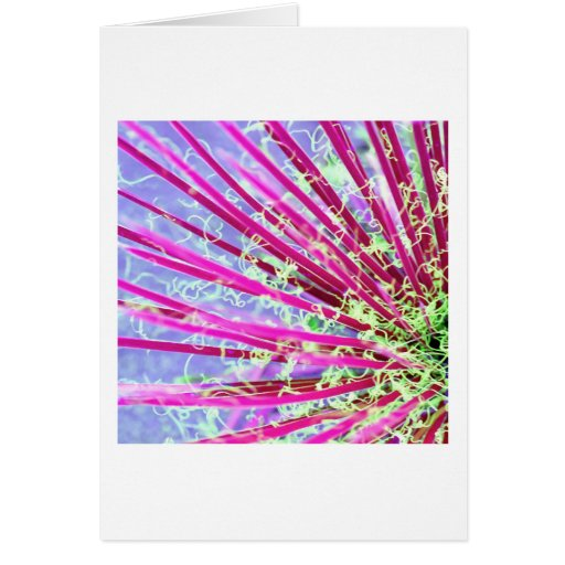 Psychedelic Yucca Abstract Red Greeting Card
