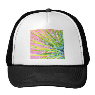 Psychedelic Yucca Mesh Hats