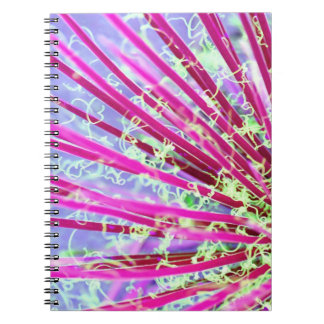 Psychedelic Yucca Notebooks