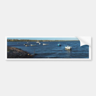 pt kenny jetty view car bumper sticker