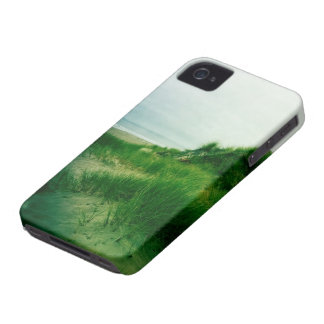 Pt. Reyes Hike iPhone 4 Covers