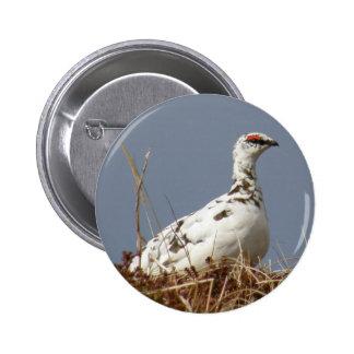 Ptarmigan in Early Spring Pinback Button