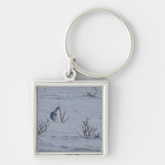 Ptarmigan Snacking Silver-Colored Square Keychain