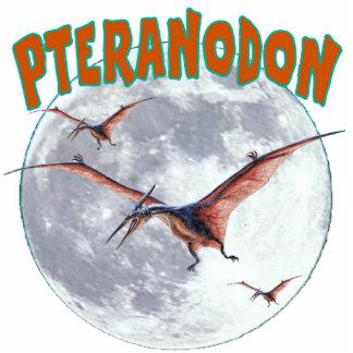 Pteranodon dinosaur cutout