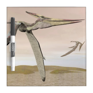 Pteranodon dinosaurs flying - 3D render Dry-Erase Board