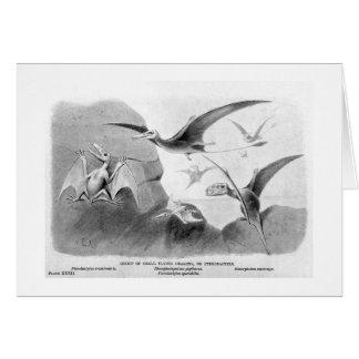 Pterodactyls art card