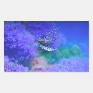 Pterois púrpura Zebrafish de los pescados del Pegatina Rectangular