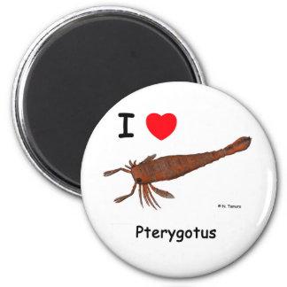 Pterygotus Imán Redondo 5 Cm