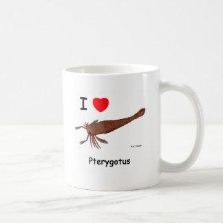 Pterygotus Taza