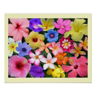 PTropical Flowers Poster