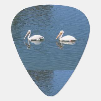 púa de guitarra de 2 pelícanos