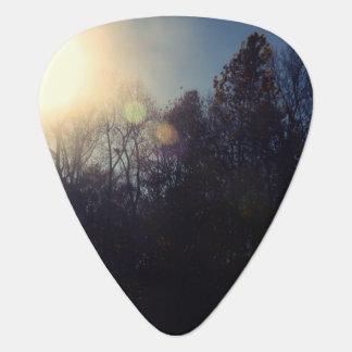 Púa de guitarra del bosque negro