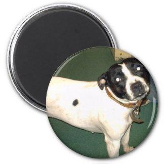 Pub Dog 2 copy 2 Inch Round Magnet