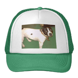Pub Dog Trucker Hat